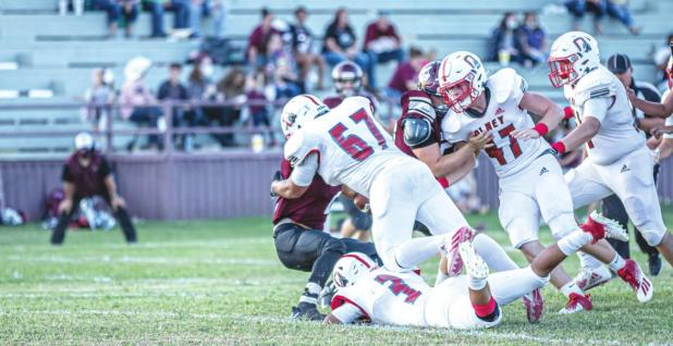 Cubs Tame the Bulldogs