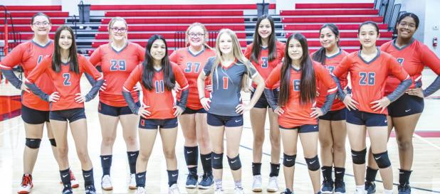 Pictured are the Lady Cubs JV 2 Squad