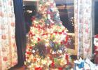 H.O.M.E. for Christmas