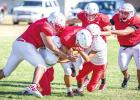 Olney Cubs Score with New Additions to the Coaching Staff